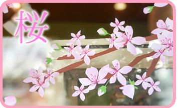 桜の店舗装飾ウィンドウシール